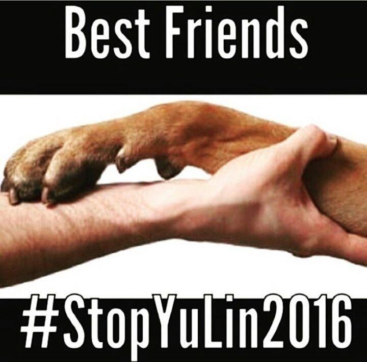 #STOPYULIN2016